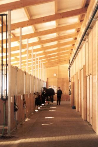 Schwerpunkt Bauprojekte: Pferdesport - Pferdehaltung Projektübersicht