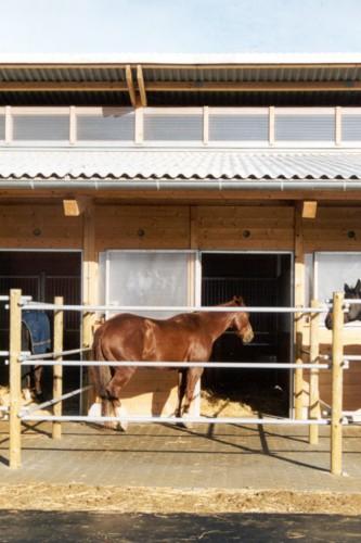 """Projektbild Neubau einer Reithalle und eines Pferdestalls in Ditzingen-Hirschlanden mit Link zur Projektseite, FN-Auszeichnung: """"Unser Stall soll besser werden"""""""