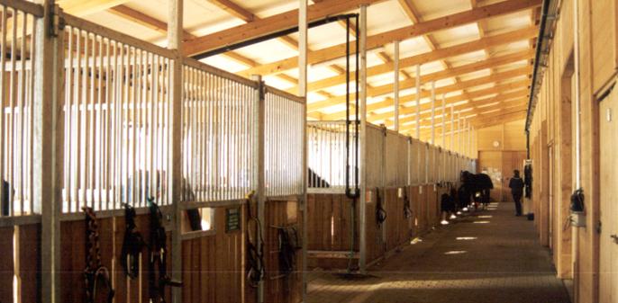 Projektbild vom Neubau einer Reithalle und eines Pferdestalls, Ditzingen-Hirschlanden